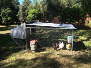 Dome Asylum Coop 2016